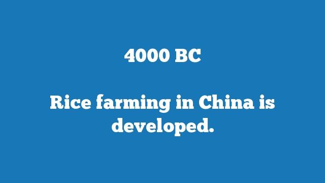 Rice farming in China is developed.